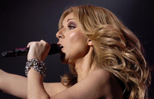 Celine Dion stále patří mezi nejlépe placené hvězdy se sumou 706 428 000 korun.