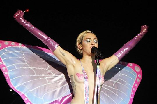 Tahoto motýla můžete potkat snad jen na erotickém festivalu.