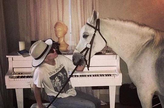 Za umírající klisnou Gaga spěchala hned po obdržení ceny.