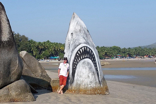 Umělec proměnil skálu ve žraloka.