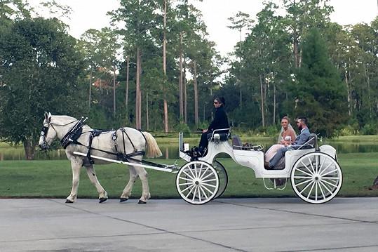 Maci a Taylor si dopřáli i jízdu kočárem.