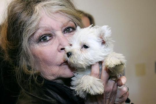 Stále je aktivistkou bojující za práva zvířat.