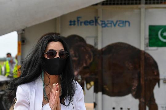 Cher v poslední době bojuje za práva zvířat, zachráněného slona nedávno doprovodila do jeho nového domova v Kambodži.
