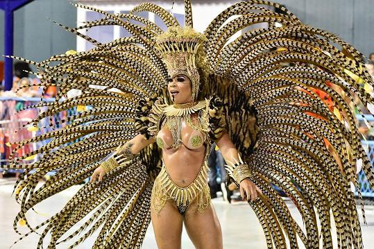 Karneval v Riu patří v Brazílii k velkým událostem.