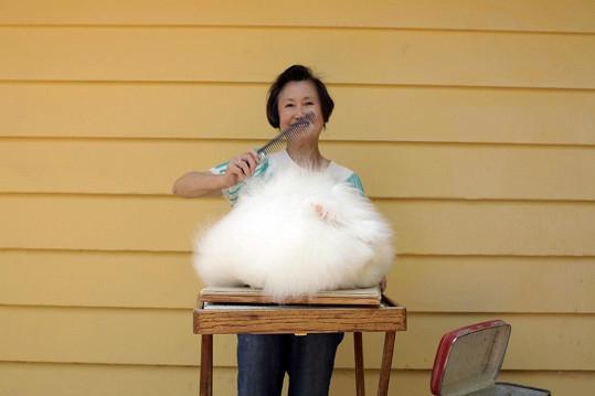 Betty Chu angorským králíkům zasvětila svůj život.