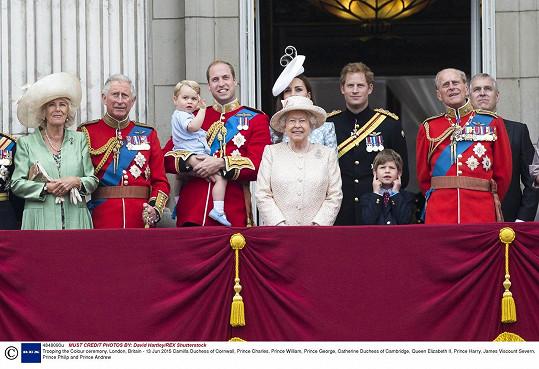 Královská rodina sleduje um vojenského letectva.