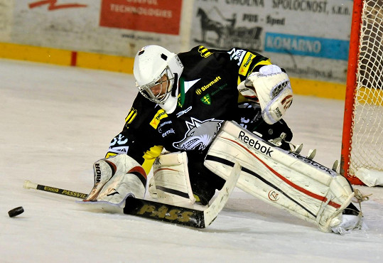 Marek Peksa je hokejový brankář.