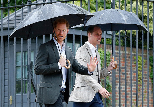 Naomi se stala globální ambasadorkou charitativní organizace The Queen's Commonwealth Trust. Napjaté vztahy mezi královskými bratry modelku mrzí.