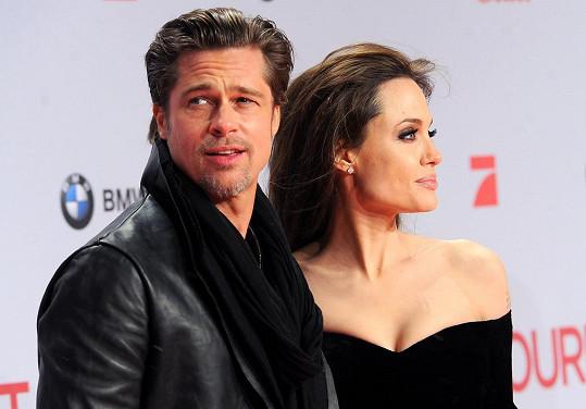 Angelina a Brad se podělí o 12 nemovitostí.