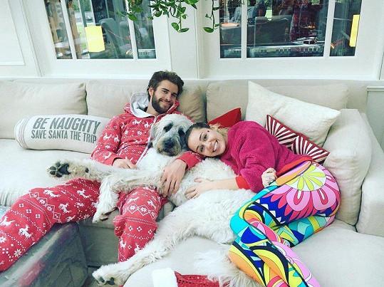 Miley Cyrus a Liam Hemsworth se svou věrnou společnicí Dorou