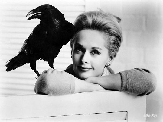 Milovnice šelem Tippi Hedren ve své nejslavnější roli v hororu Ptáci.