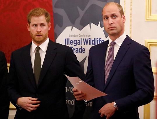Vztahy mezi Williamem a Harrym prý už nejsou, co bývaly.