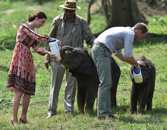 Na návštěvě Afriky v šatech z dalšího britského řetězce Topshopu za 2 200 Kč.