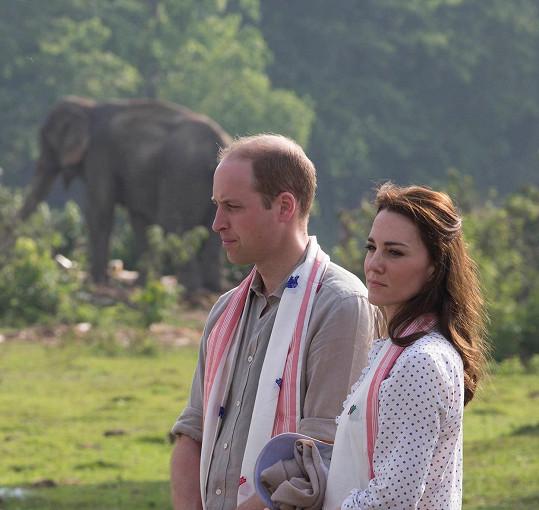 Na návštěvu parku, kde žijí ohrožené živočišné druhy, královský pár jen tak nezapomene.