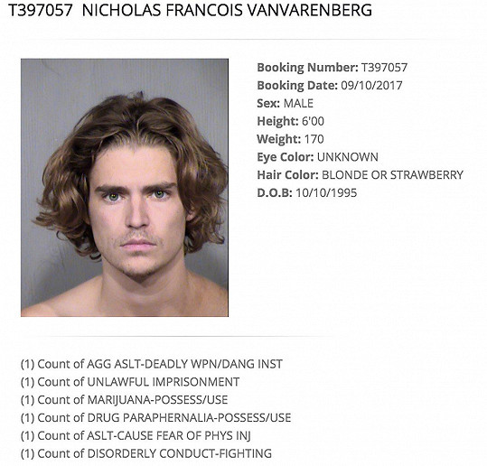 Van Varenbergův policejní identikit