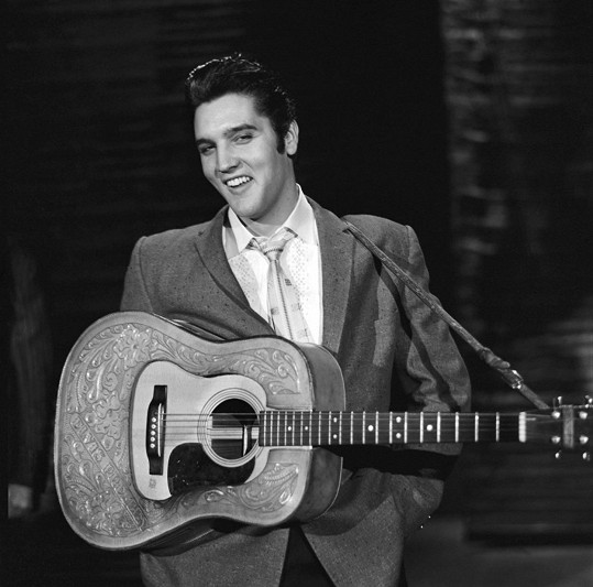 Elvis byl podle autorky Sally Hoedel ale vážně nemocný.