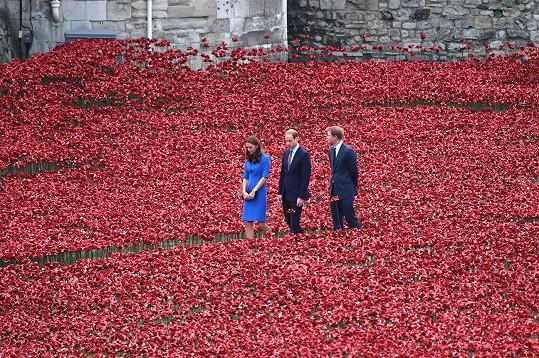 Okolo londýnského Toweru se nachází téměř 890 tisíc keramických vlčích máků jako vzpomínka na vojáky padlé během první světové války.
