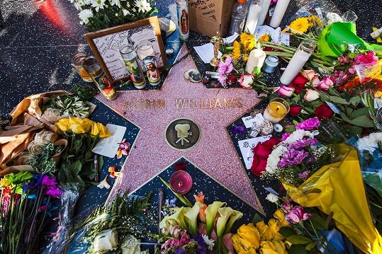 Hercova hvězda na hollywoodském chodníku slávy
