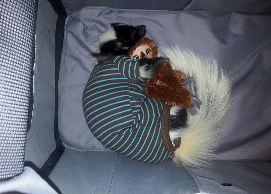 Toot si oblíbil dětské pyžamo.