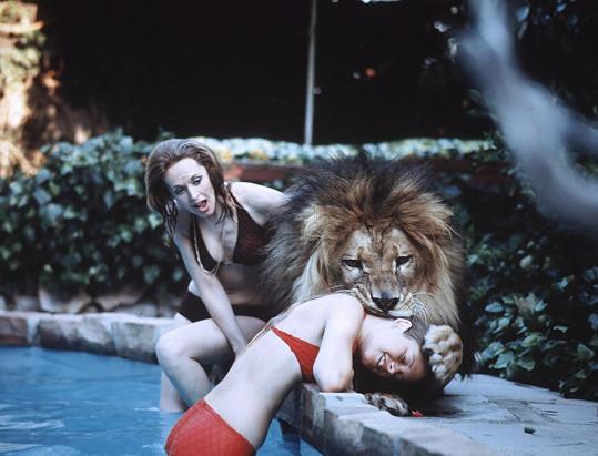 Melanie s maminkou Tipi Hedren a adoptovaným králem džungle...