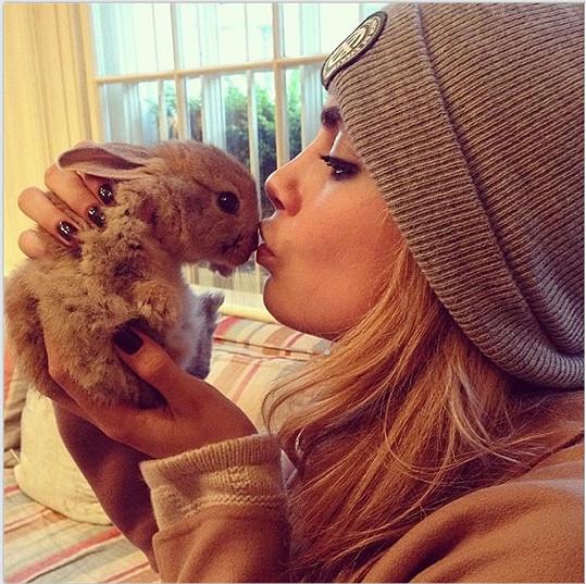 Cara Delevingne a její králíček
