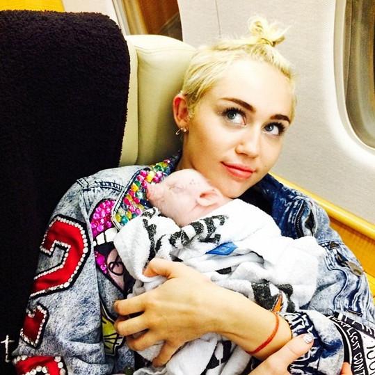 Miley Cyrus s prasátkem