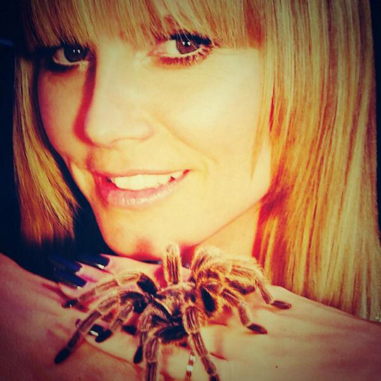Heidi Klum má pro strach uděláno.