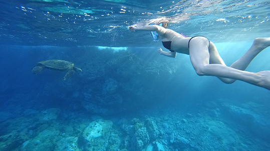 Moderátorka se koupala s mořskými želvami.