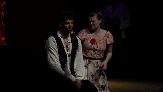 V muzikálu Cikáni jdou do nebe hraje bezmezně a nešťastně zamilovanou Julišku.