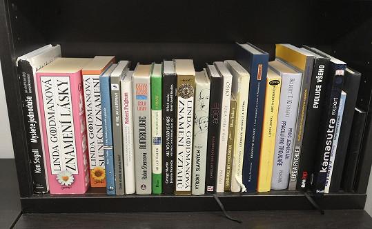 V menší knihovně stojí několik zajímavých knížek.