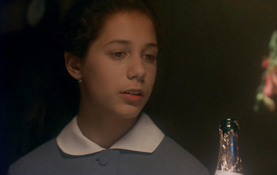 Sylva Tománková ve filmu Šakalí léta (1993)