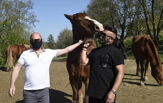 Osmany s partnerem Guyem a jejich koňmi.