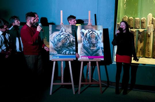 Lucie s kapelou před časem pokřtila dva malé tygry, zítra pro ně budou zpívat v Lucerna Music Baru.