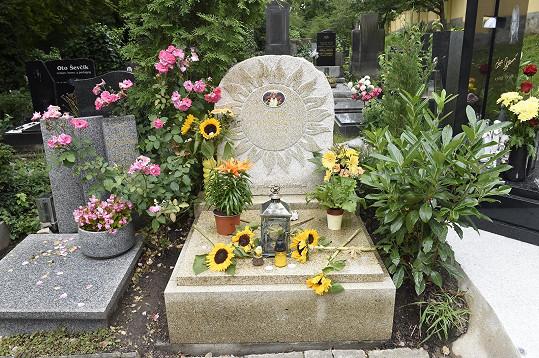 Hrob Daniela Nekonečného je plný slunečnic a gerber v jeho oblíbené žluté barvě.