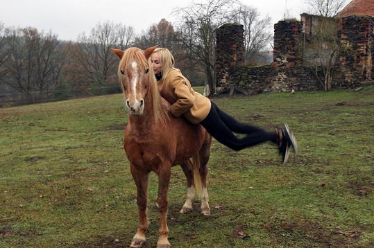 Koník nevypadá vysoký, ale dostat se na něj, dá zabrat.