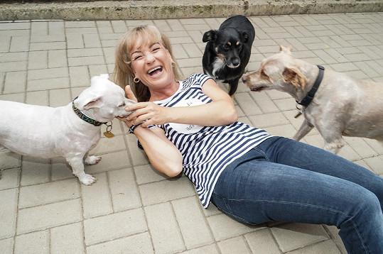 Sandru jsme potkali v psím útulku.