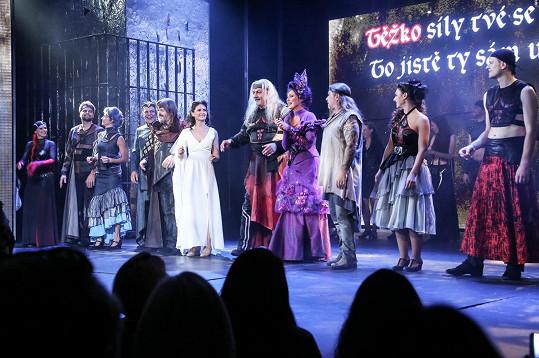 Diváci na konci představení tleskali ve stoje.