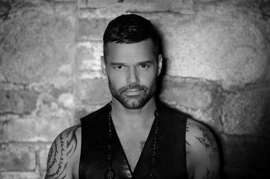 Ricky Martin vydal deset studiových alb, přičemž poslední znich A Quien Quiera Escuchar (2015) získalo Cenu Grammy za nejlepší album latinského popu.