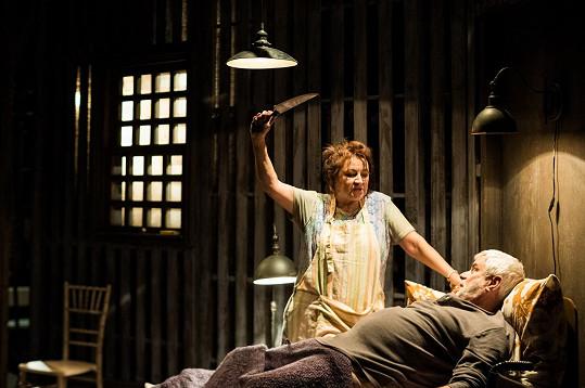 """""""Na Annie Wilkesovou se moc těším, je to šance poznat dosud nepoznané, mimořádná herecká příležitost,"""" říká Adamovská."""