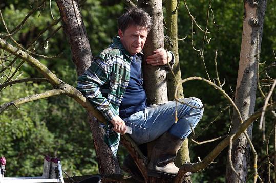 Šťastný seděl ve větvích při natáčení dvě hodiny.