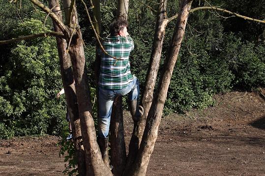 Na strom se herec sotva vyškrábal.