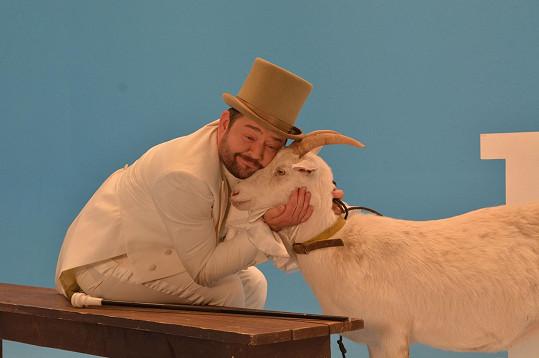 A ženich Michal Hudák místo ní políbí kozu.