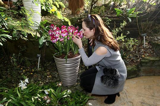 Kostková zahajovala v botanické zahradě výstavu orchidejí, která se koná již pojedenácté.