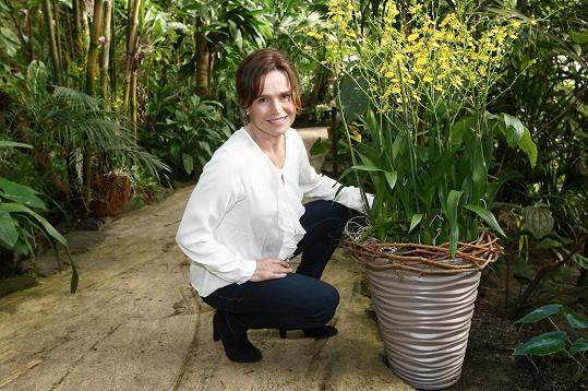 Šípková zahajovala v botanické zahradě výstavu orchidejí, která se tento rok koná již pojedenácté.