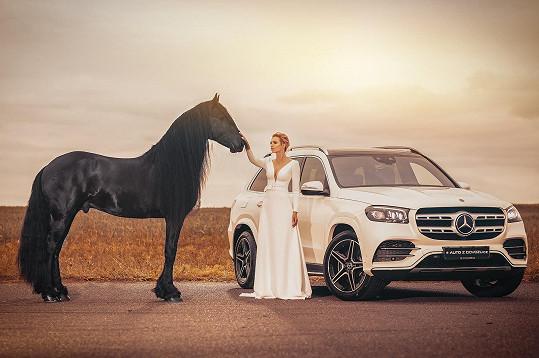 Mašlíková fotila s nejkrásnějším hřebcem roku 2019.