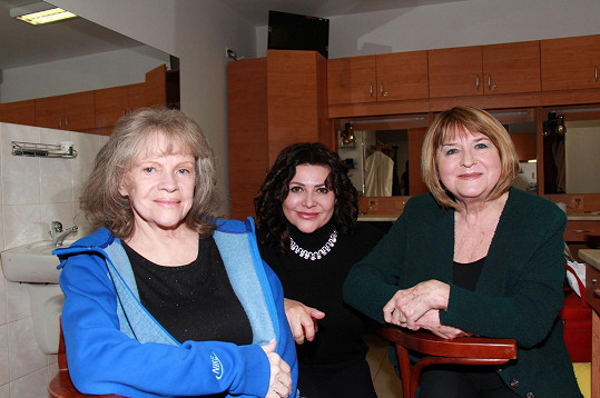Na akci Zlatá léta šedesátá zpívala s Evou Pilarovou a Pavlínou Filipovskou.