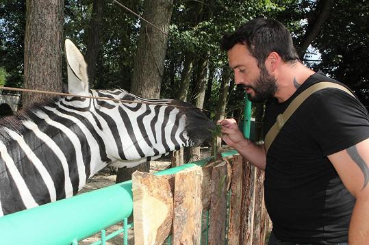 Když si na setkání protagonistů muzikálu hladil zebru, divil se, jak mu pak páchly ruce.
