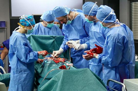 Nemocniční prostředí nemá herečka v lásce, před kamerami jí nevadí.