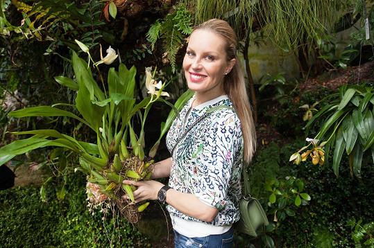 Během zahájení umístila do expozice vysokohorské květeny skleníku Fata Morgana vTroji vzácnou orchidej druhuCoelogyne lawrenceana.