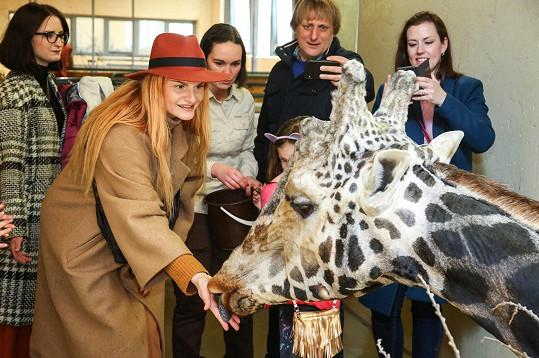 Iva Pazderková se stala kmotrou žirafí slečny Nely.